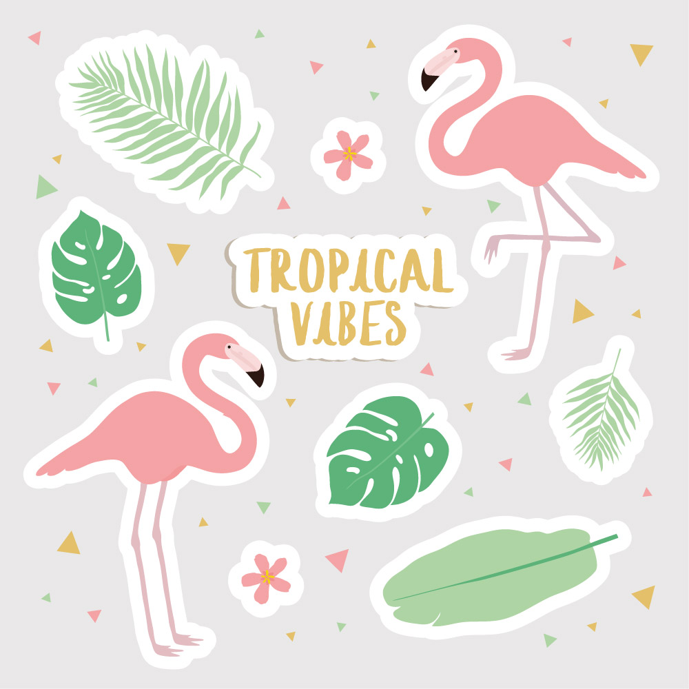 forme aimant tropical